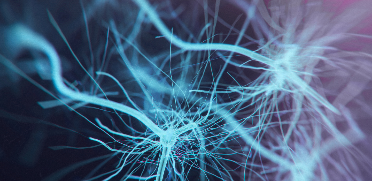 Image: neurons
