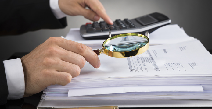 Businessperson Checking Invoice - audit